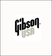 Gibson 101